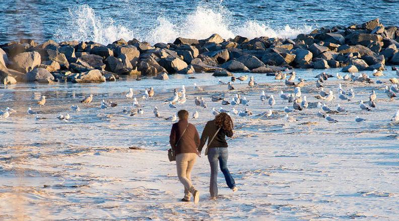 marriage proposal myrtle beach